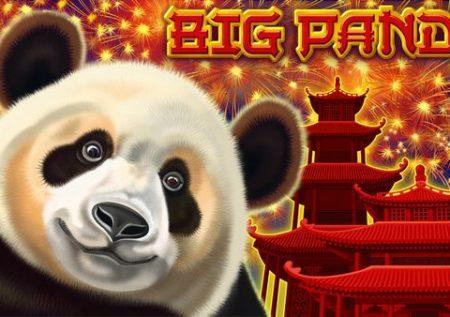 Nagy Panda