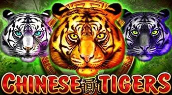 Mga Tigre ng Tsino