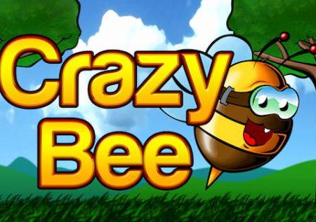 Luda pčela