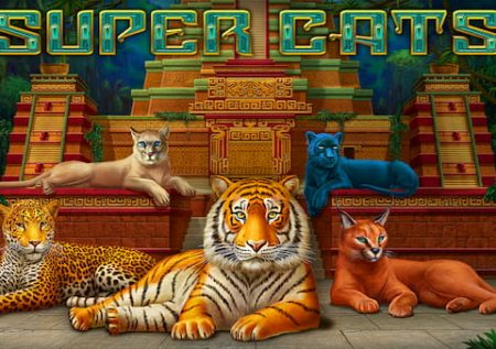 Kucing Super
